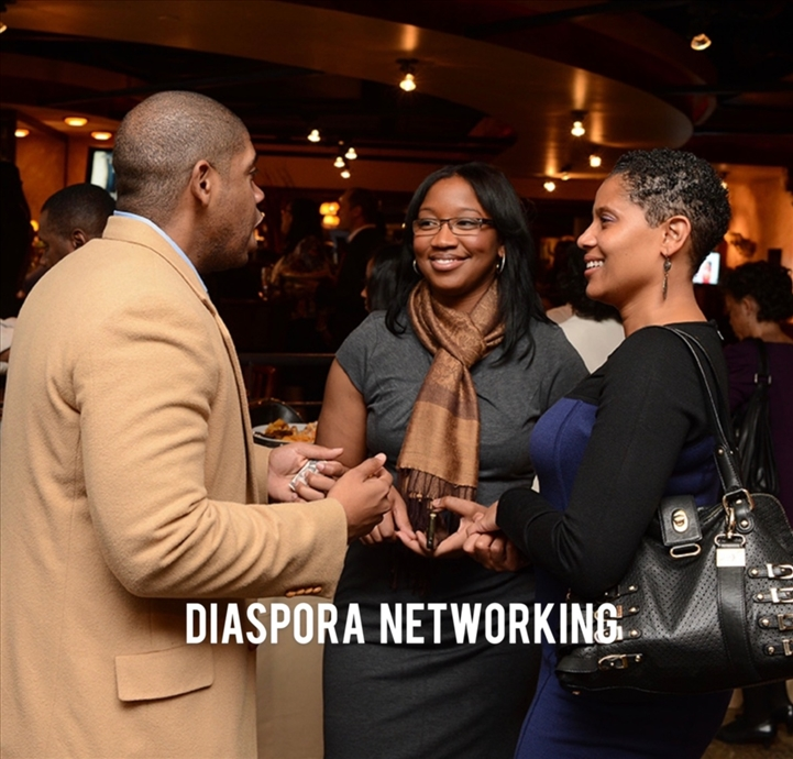 Diaspora Network Mixer August
